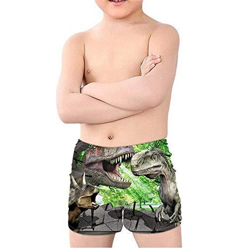 Coloranimal Teen Boy Cool Animal T-Rex Dinosaurier Badehose Batjing Anzug Beach Board Shorts Swinwear Quick Dry 5-14Y Gr. 11-12 Jahre, Dinosaurier 03